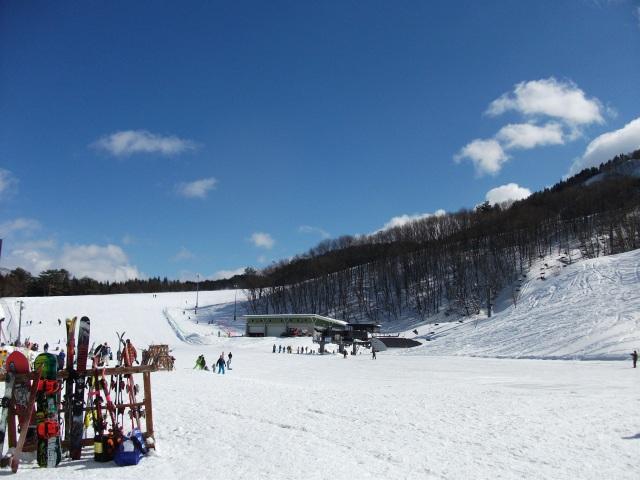 スキー 山形 連盟 県